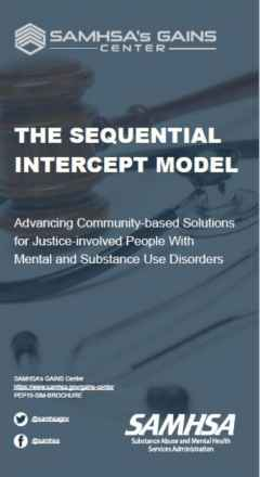 Sequential Intercept Model Trifold Brochure